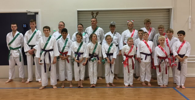 Christmas karate group 2017
